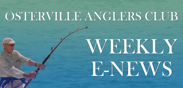 Osterville Anglers Club Weekly E-News — May 14th, 2013